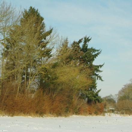 Winter landscape, Pentax K200D, Sigma 18-50mm F3.5-5.6 DC
