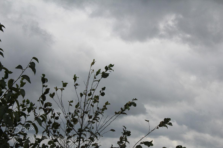 Photograph Cloudy sky by Shelley Aasland on 500px