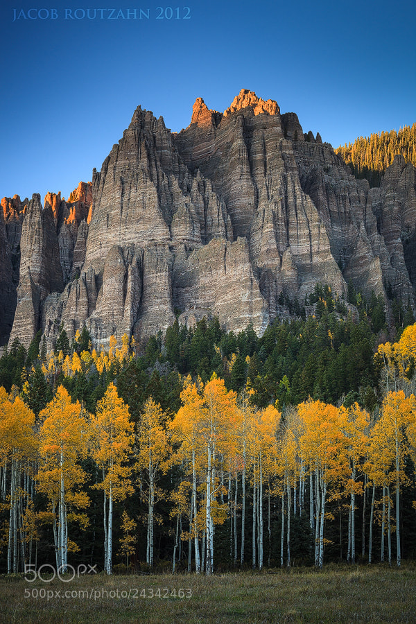 Photograph Crowned in Glory by Jacob Routzahn on 500px