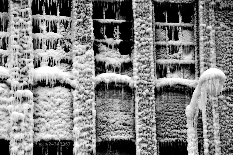 Photograph Untitled by Gloria Poznanski on 500px