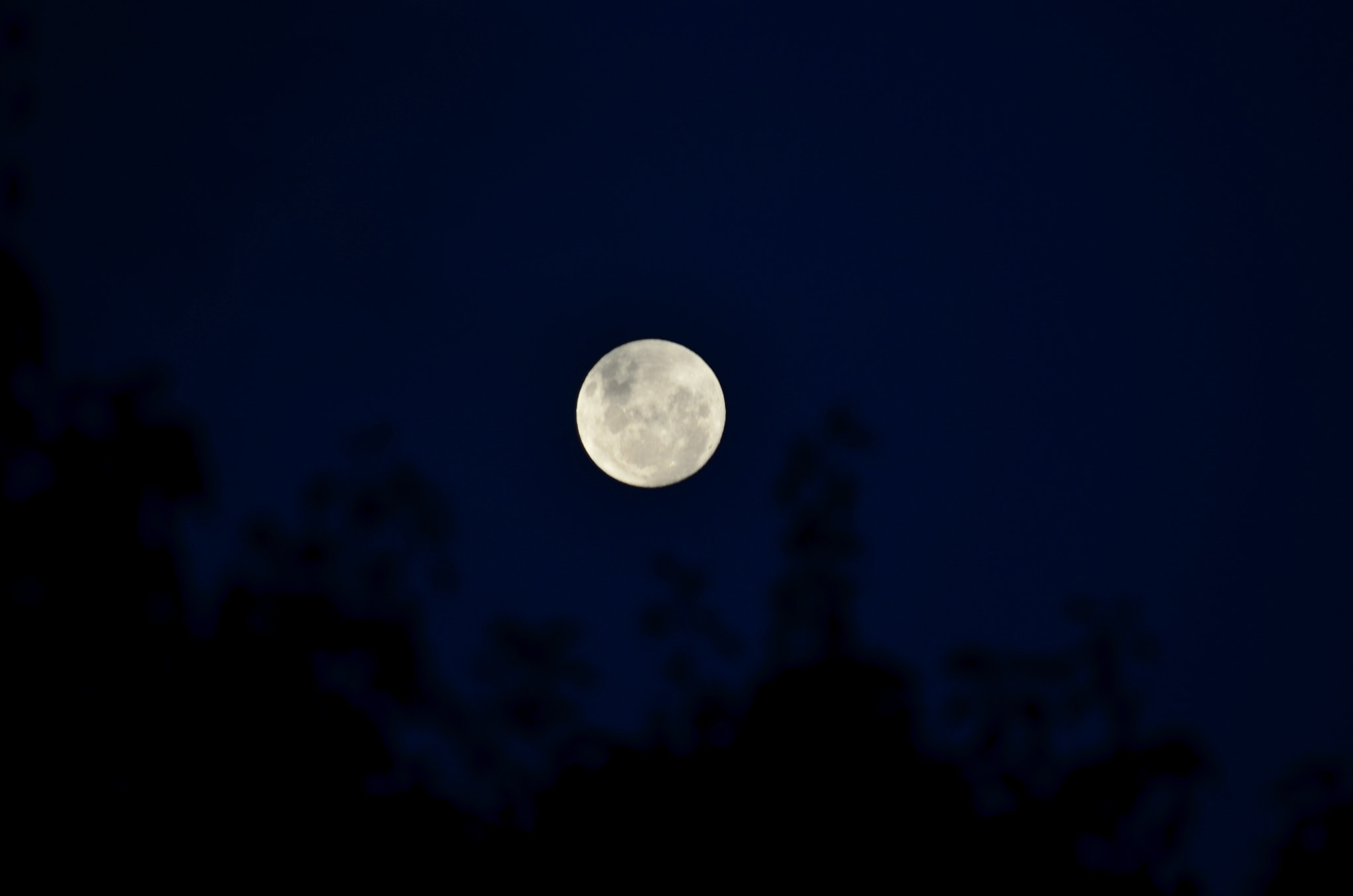 Photograph Full moon by Madan Neelagiri on 500px