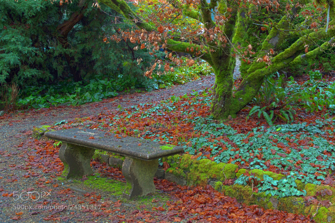 Photograph A Place to Rest by Jim Powers on 500px