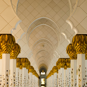The Pillars - The Grand Mosque by julian john (sandtasticdays)) on 500px.com