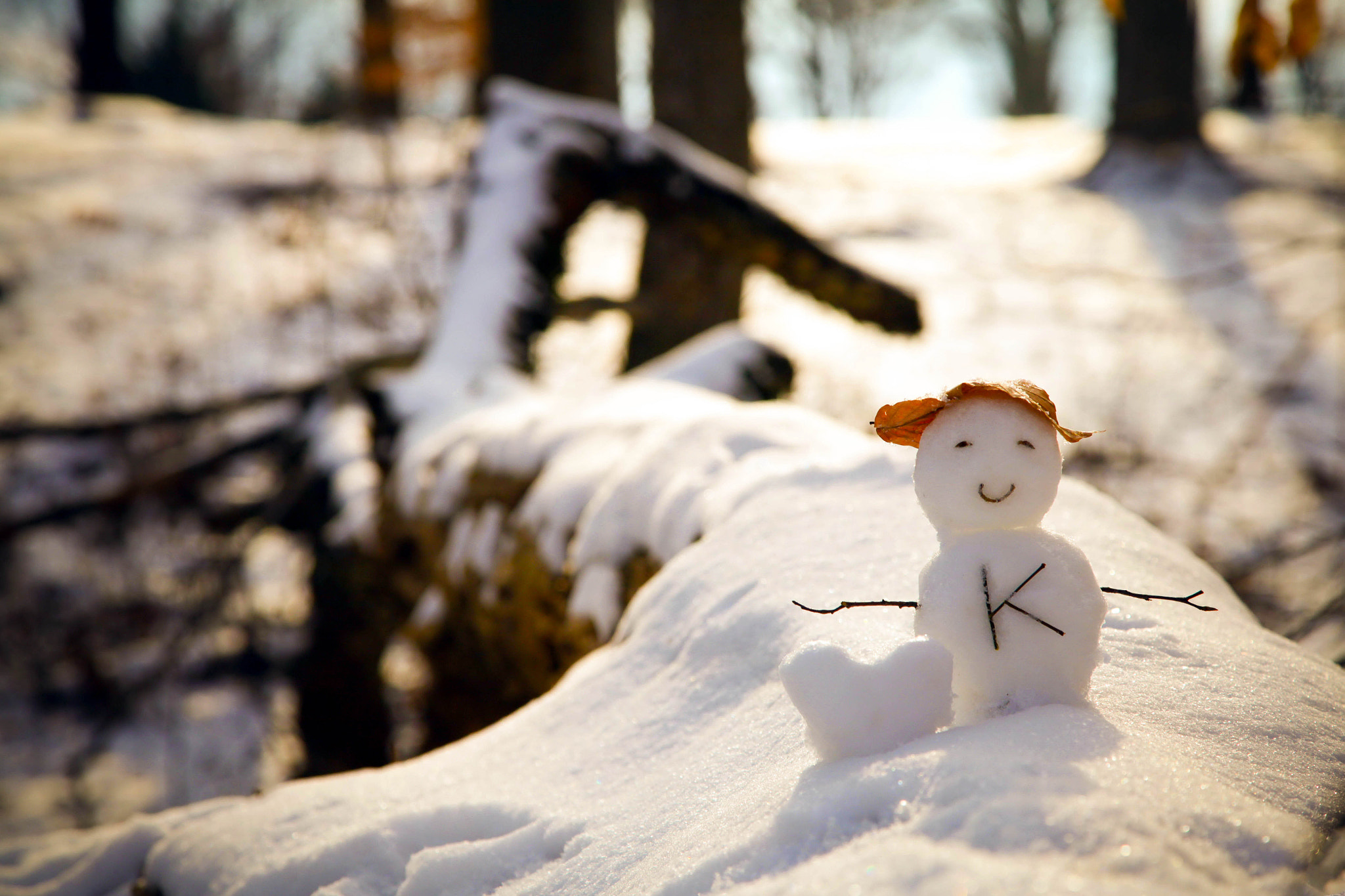 Photograph My little snowman by Kristy Yang on 500px
