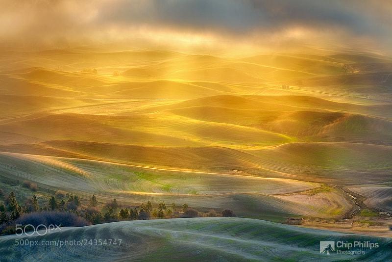 Photograph Golden Light Palouse by Chip Phillips on 500px