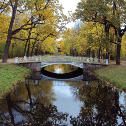 Пушкин. Александровский парк, Sony DSC-W190