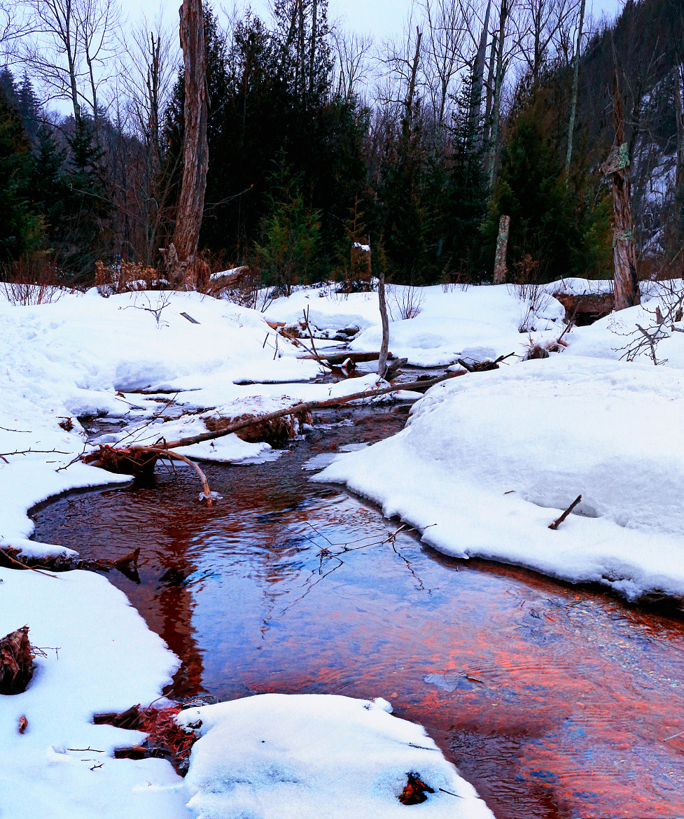 Photograph Red Stream Bed by Matt H on 500px