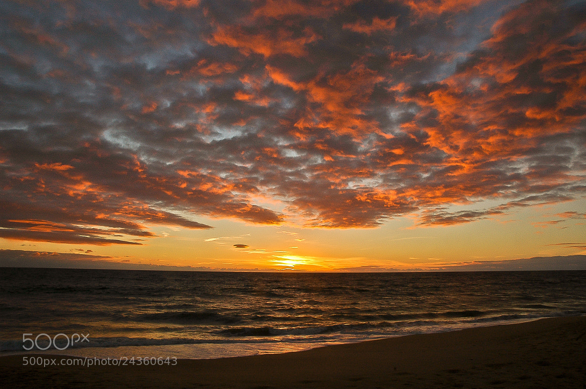 Photograph Sunset on Faro Beach 3... by José Covas on 500px