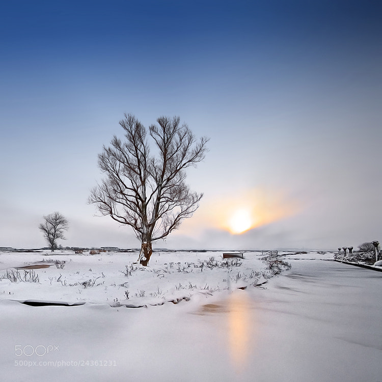 Photograph Cold winter by Iván Maigua on 500px