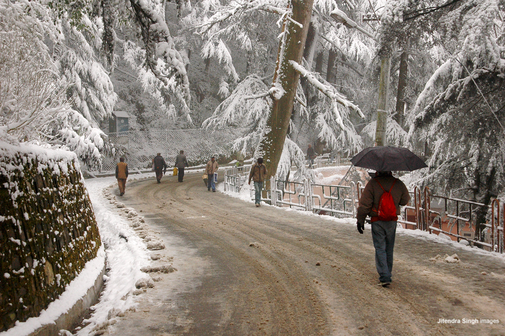 Photograph Mall Road, Shimla, India by Himachal Geographic on 500px