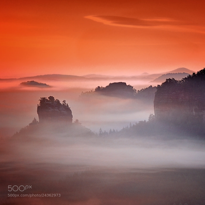 Photograph Morning in the Saxon Switzerland by Tomáš Morkes on 500px