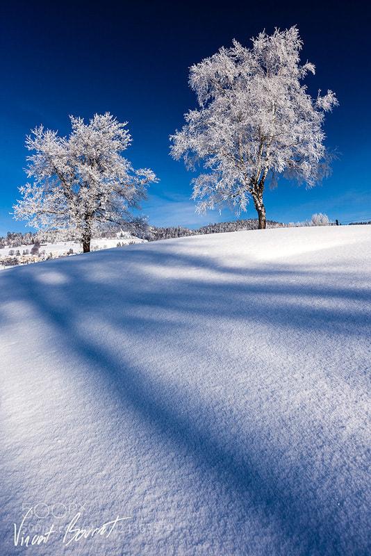 Photograph Light & Shadows by Vincent BOURRUT on 500px