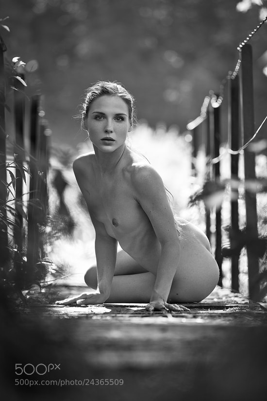 Photograph feline by Jochen Dreess on 500px