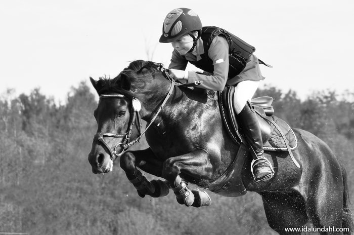 Photograph Jumping Horse by Ida Lundahl on 500px