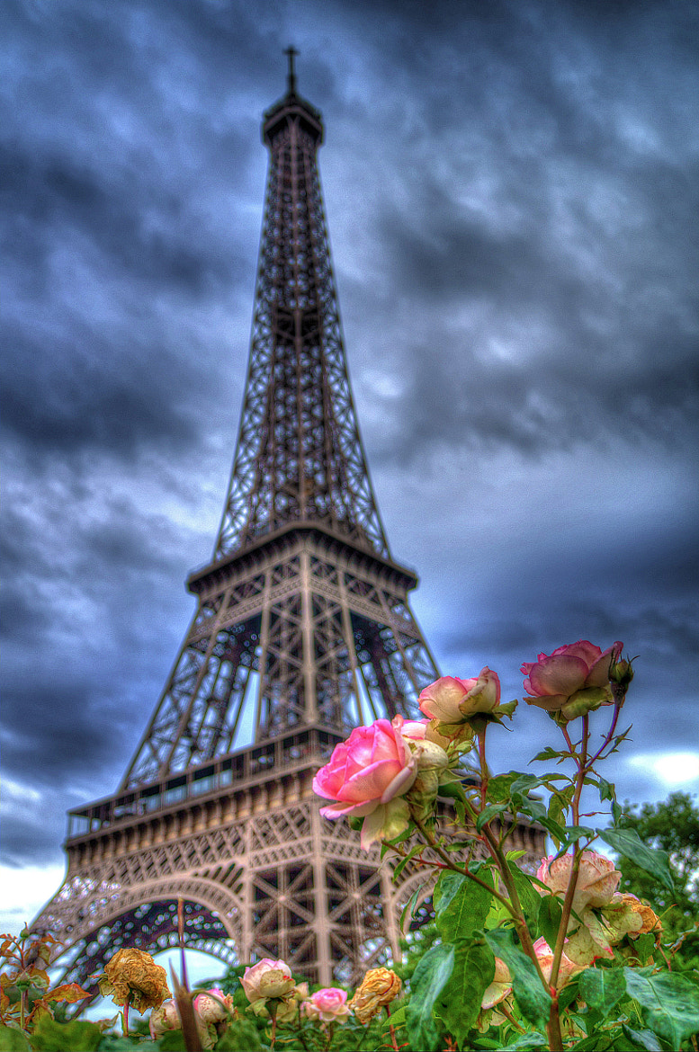 Photograph Eiffel Tower by Mohammed Abdo on 500px