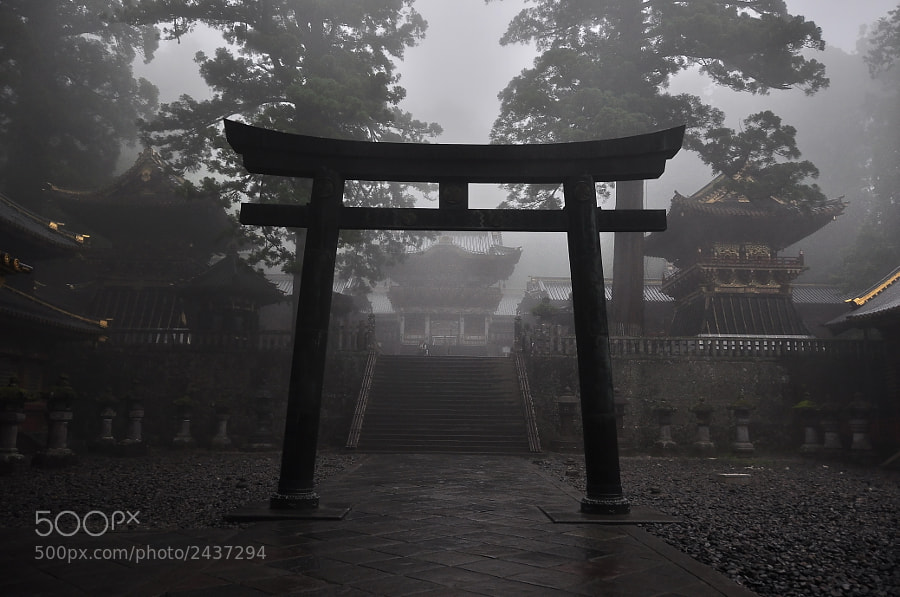 """Mysterious Japanese temple with sacred door """"torii"""" in a foggy day"""