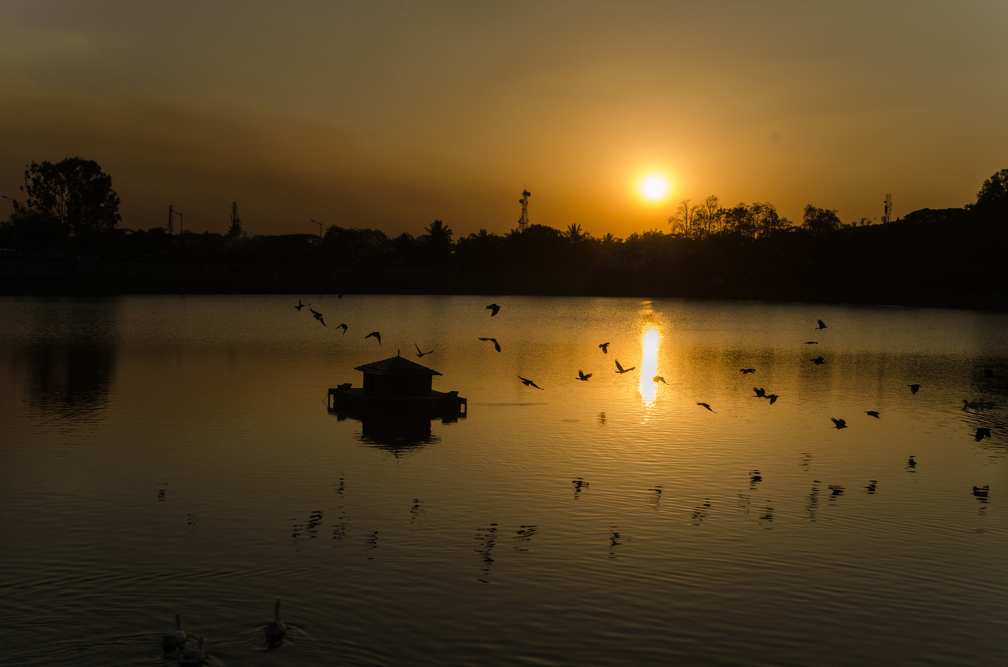 Photograph Sunset @ sankey.. by Ananth Shayan on 500px