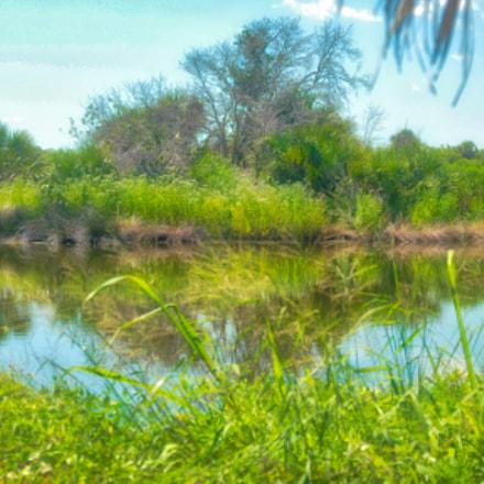 Pelican Island, FL, Nikon D200, Sigma 24-60mm F2.8 EX DG