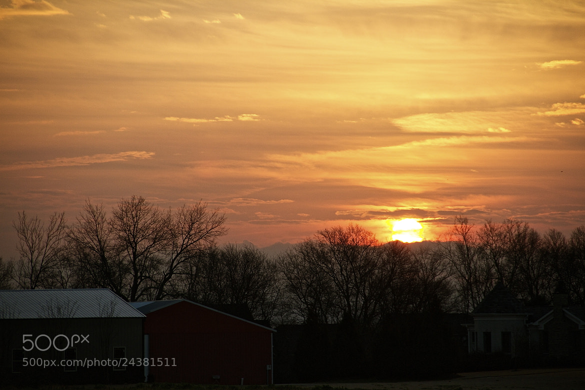 Photograph A January morning by Ann Weis on 500px