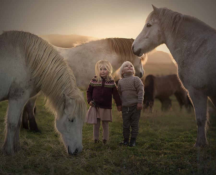 ..in Iceland by Elena Shumilova on 500px.com
