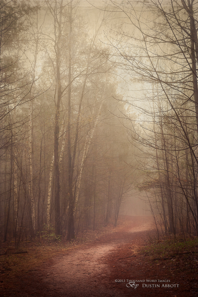 Photograph The Good Path by Dustin Abbott on 500px