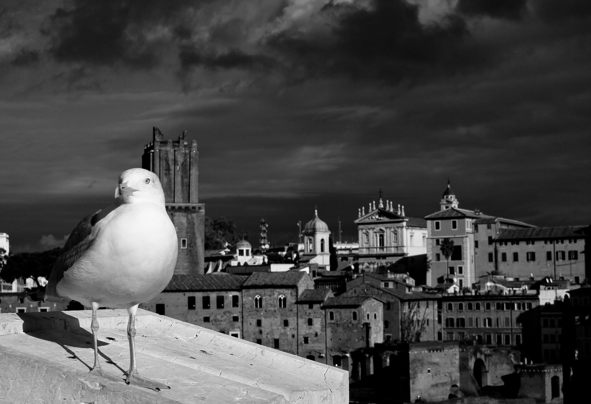 Photograph Fly to Rome by Tony  Carriero on 500px
