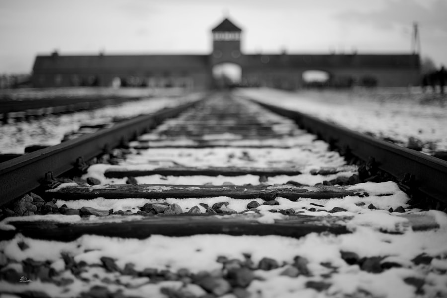 Birkenau 1 by Alđo Ðiazzi on 500px.com