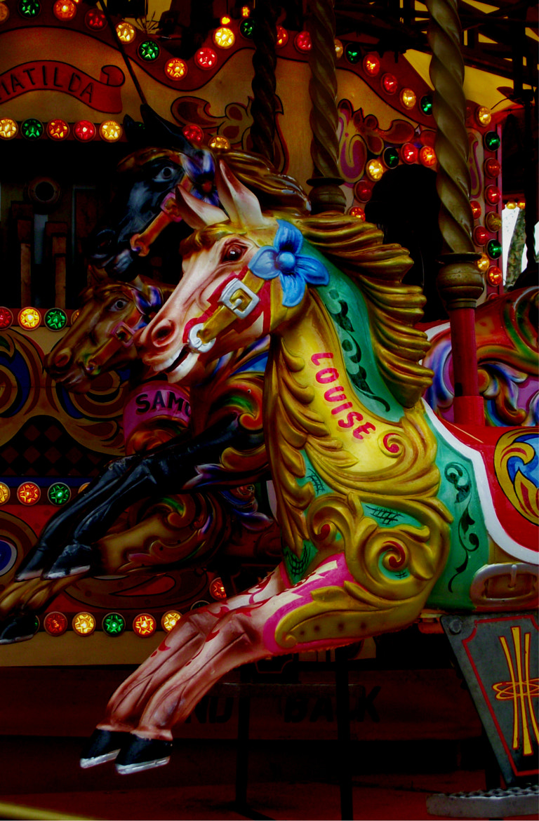 Photograph the horses on the merry go around by Shirley Tucker on 500px