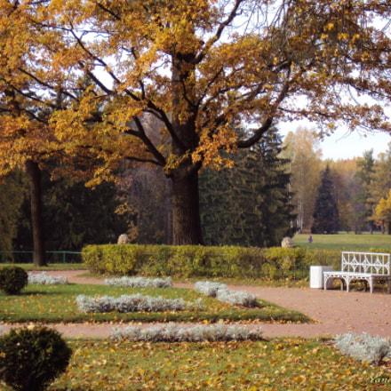Pavlovsk. My favorite Park, Sony DSC-W190