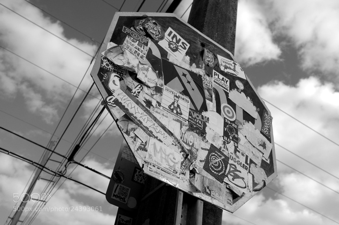 Photograph stop in wynwood by Chiyin Ng on 500px