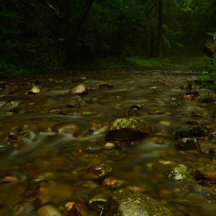 river, Nikon D750, AF Zoom-Nikkor 28-200mm f/3.5-5.6D IF