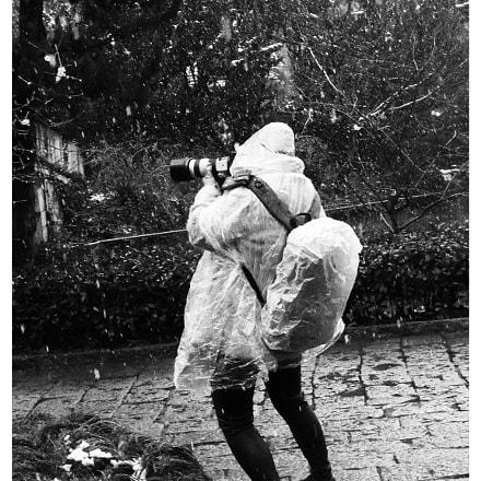 Photography master, Fujifilm FinePix F200EXR