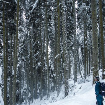 Borjomi-Kharagauli national park #3, Sony DSC-W320