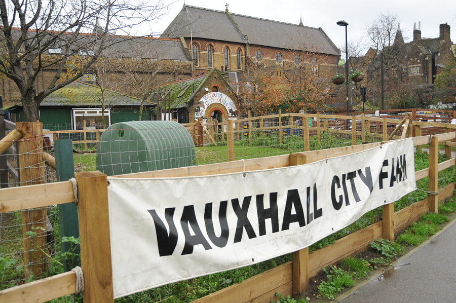 Vauxhall City Farm, London by Sandra  on 500px.com