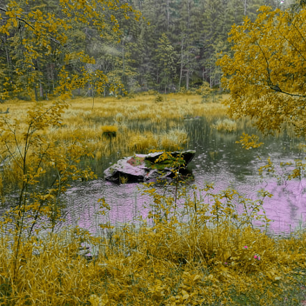 Kachlmoor im Herbst