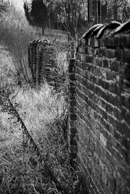 Photograph Wonderwall by Elena Taliano on 500px