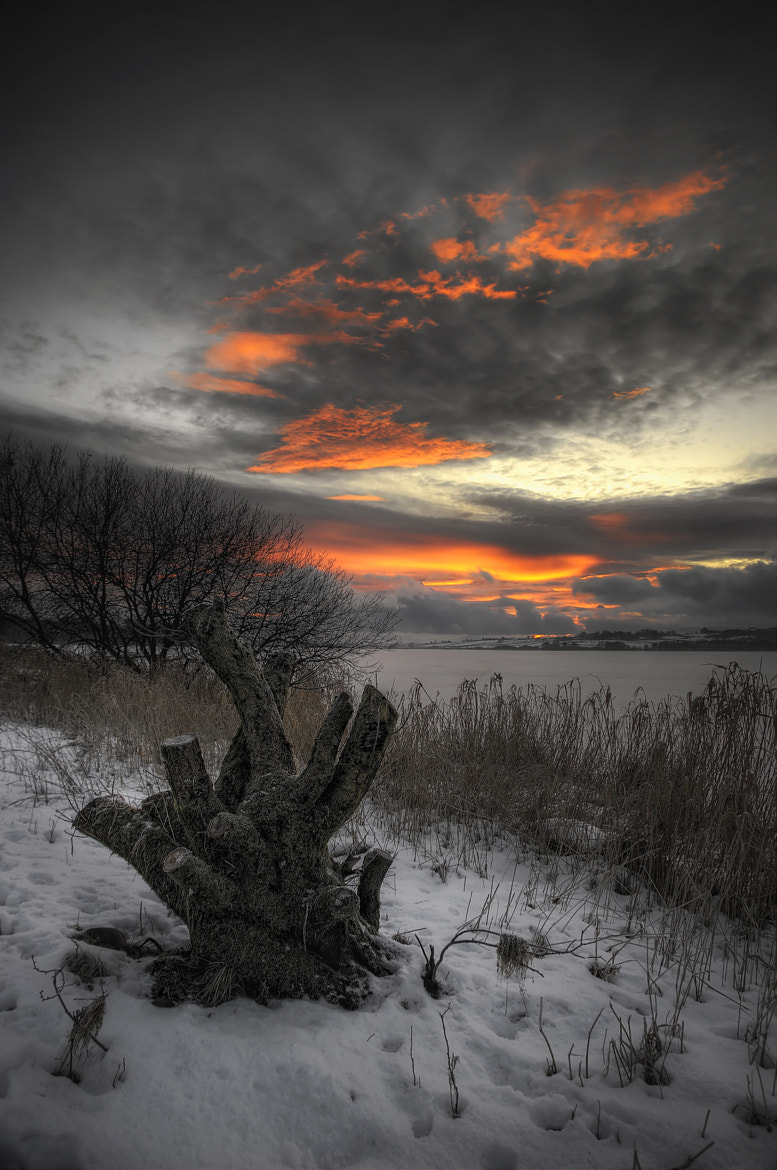 Photograph Winter Sunset by Johnny Graham on 500px