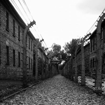 Auschwitz, 27 Gennaio 1945, Sony DSC-W7