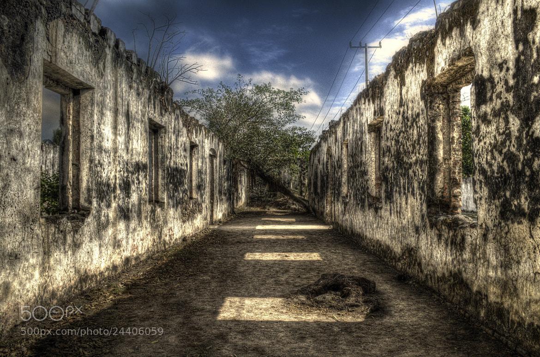 Photograph Cortez' Lands 1 by Erick Garcia Garcia on 500px