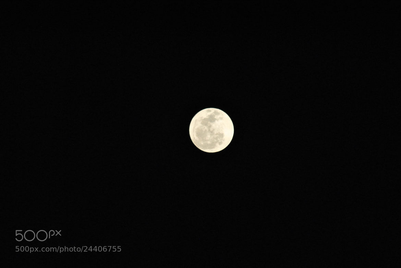 Photograph Luna by Jorge Cardenas on 500px