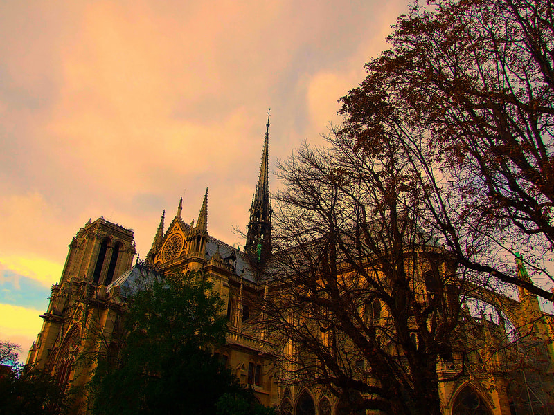 Photograph Notre Dame by Eva Slusar on 500px