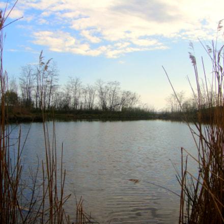 Marsh, Sony DSC-T90