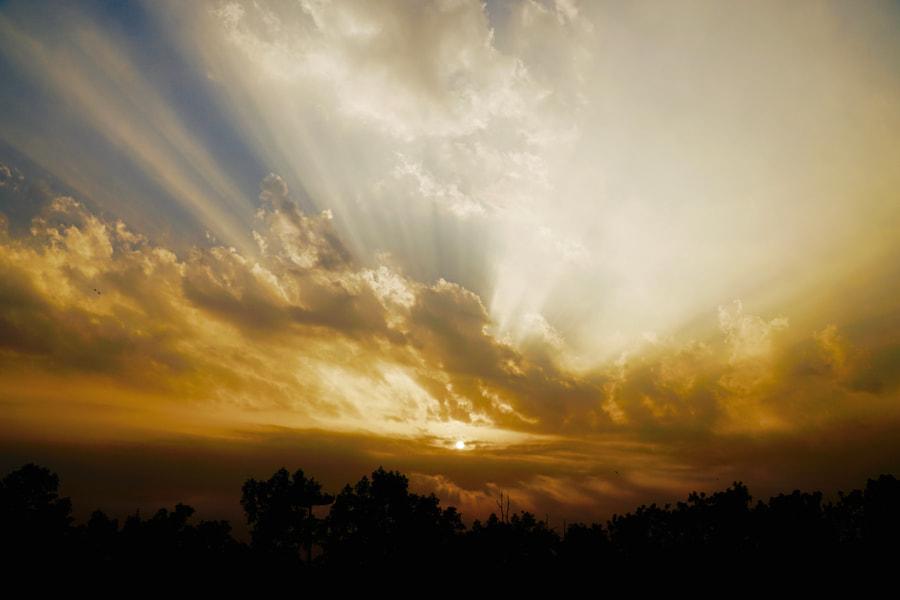 sunshine, автор — Ahmed Shah на 500px.com