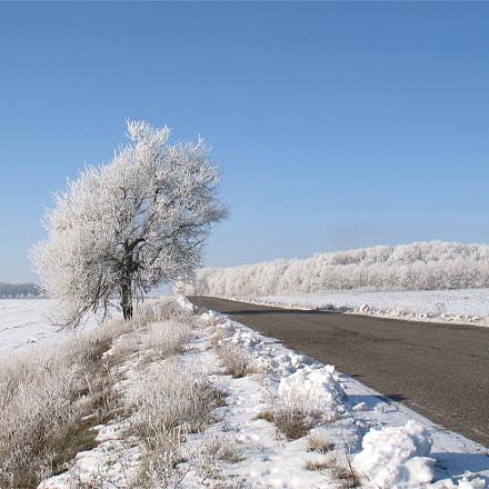 Зимняя, Canon POWERSHOT A640