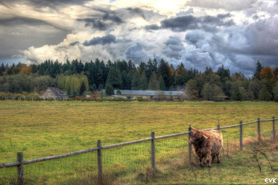 Photograph Above These Fields by Ernie Kasper on 500px