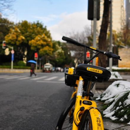 Riding across Shanghai, Nikon D90, AF-S Nikkor 24mm f/1.8G ED