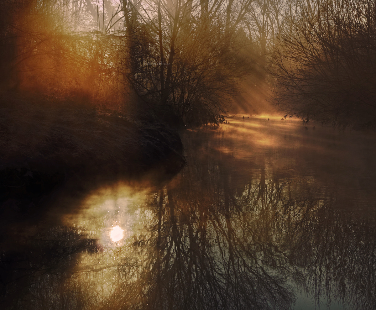 Photograph In cold light by Roberto N. on 500px