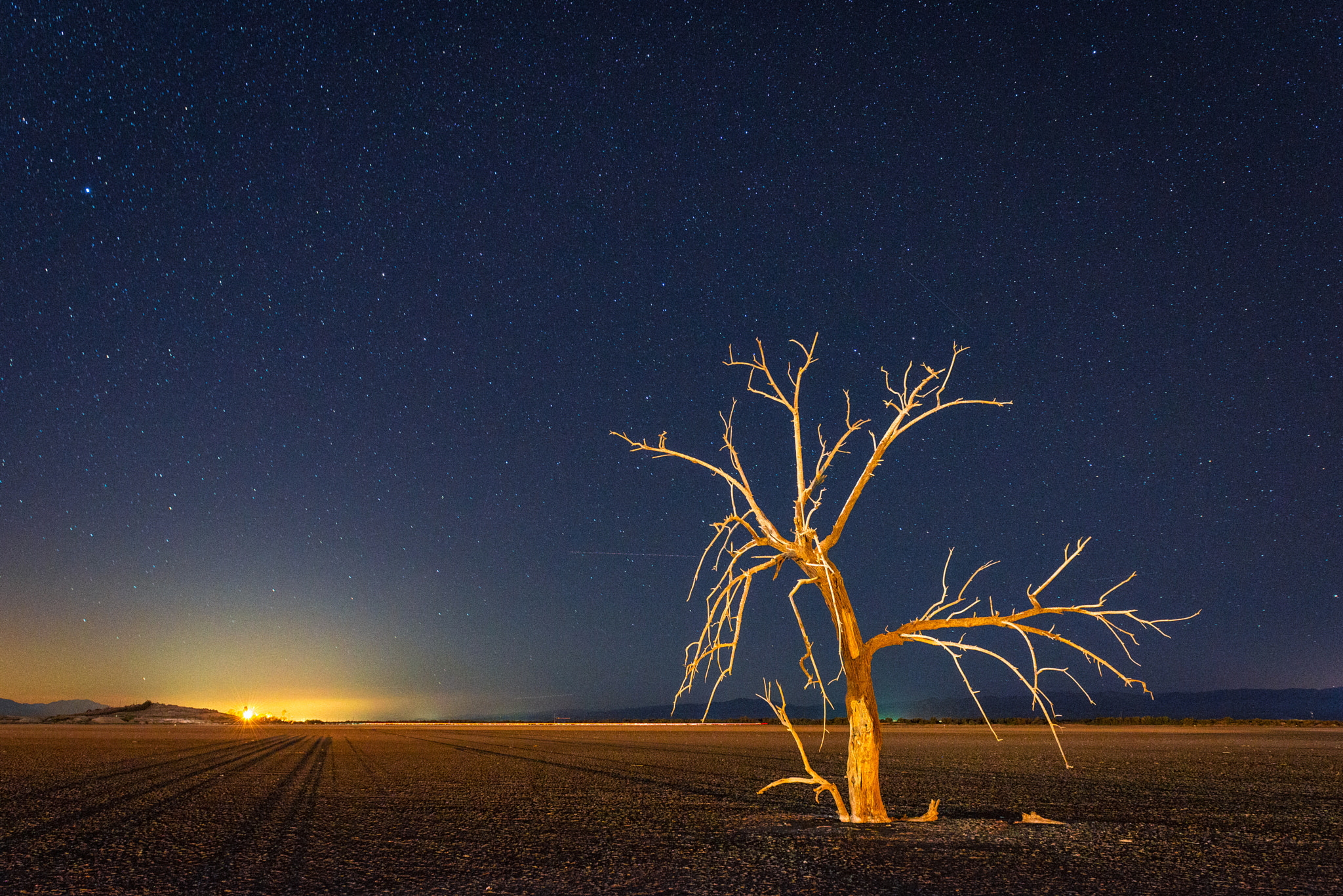 Photograph Lone Tree by Keith Skelton on 500px