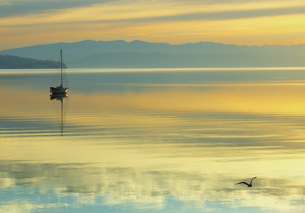 Photograph Soft Dawn by Tony Sweet on 500px