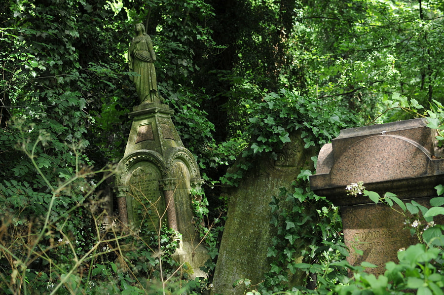 Nunhead Cemetery, London by Sandra  on 500px.com